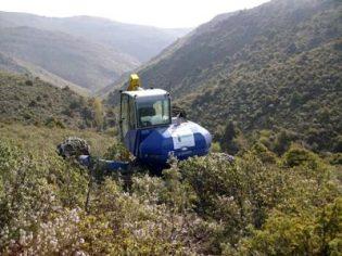 Restauración de la vegetación natural en T.M. de Torremocha del Jarama. (Comunidad de Madrid).